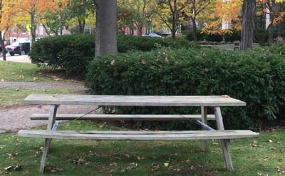 Picnic Table near Brookline's Town Hall
